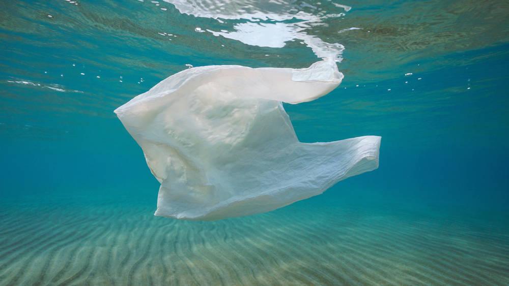 El impacto medioambiental de las bolsas de plástico